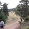 Özcan Dağ Evi-Aladağ Göleti / Bolu Trekking