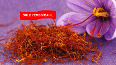 Safran Çiçeği Hasadı / Cam Teras / Safranbolu