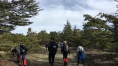 Yünlü Yaylası/Aşağı Ovacık Köyü/Alakoç Köyü Gerede Trekking